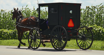 ハイウェイを走るアーミッシュの馬車